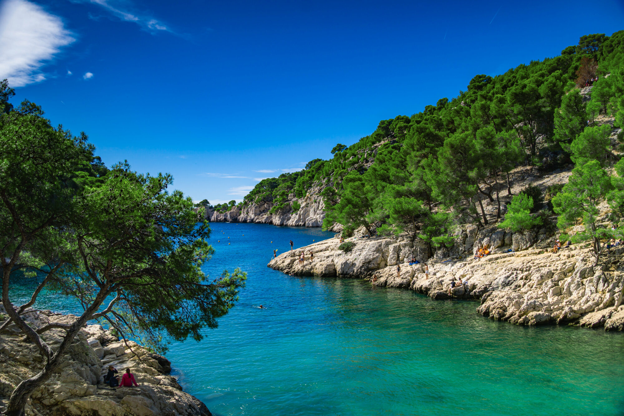 Wonderful viewpoint from the forest, Calanques National Park near Cassis fishing village, Provence